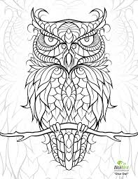 Printable Adult Coloring Pages Image Gallery Owl For Adults