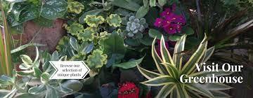 Christmas Tree Shops Allentown Pa 18109 by Greenhouse U0026 Gift Shop Ross Plants U0026 Flowers Orefield Pa