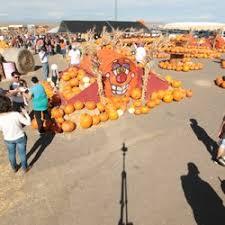 Mccalls Pumpkin Patch Application 2017 by Galloping Grace Youth Ranch Pumpkin Patch 83 Photos U0026 13 Reviews