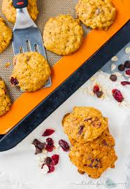 Easy Pumpkin Chocolate Chip Scones by Pumpkin Oatmeal Cookies With Dried Cranberries And Chocolate Chips