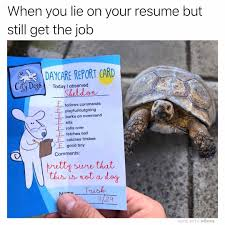 🔥🐢🔥 | Animals | Know Your Meme Should You Fess Up To Your Boss Or Hr If Lied On The Top 5 Reasons You Cant Lie On Your Resume Talentegg Catching Lies In The Hiring Process What Happens When Palmer Group Dont Lie Cv Untrue Credentials Can Land A Can Get Away With Lying Ulearning Inglish Resume 3 Ways Proceed When Lied Wikihow Steve Blank