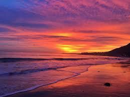 Malibu Seafood California