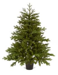 Slim Pre Lit Christmas Tree Canada by Christmas Trees Our Pick Of The Best Ideal Home