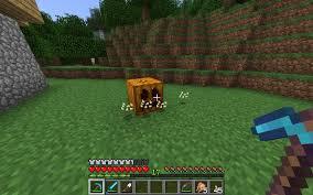 Pumpkin Pie Farm Minecraft by Natural Pumpkins Suggestions Minecraft Java Edition