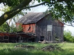The Garden Shed Homosassa Fl by 8 Best Skellig Shed Images On Pinterest Children Old Barns And