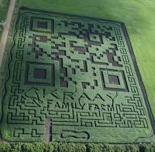 Boone Hall Pumpkin Patch And Corn Maze by Corn Maze Qr Code Awesome Things Pinterest Corn Maze