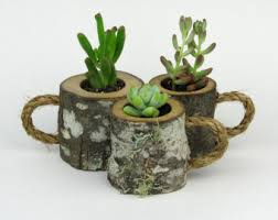 3 Rustic Succulent Planters Coffee Mugs Log Planter Cactus Holder Plant Pots Desk Small
