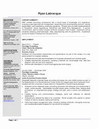 Banking Business Analyst Sample Resume Elegant Templates Sevte