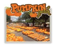 Papas Pumpkin Patch Hours by Pumpkin Patch