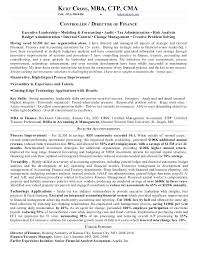 Director Of Finance Resume Examples Sample Vice President