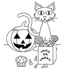A Cute Halloween Cat1