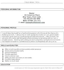 Resume Personal Statement Examples Customer Service Also