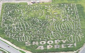 Pumpkin Patch Near Spring Tx by A Maize Ing Halloween Corn Mazes Celebrate 50 Years Of It U0027s The
