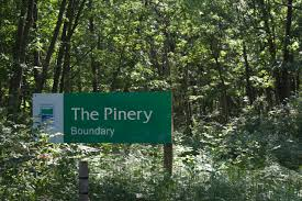 Pinery Christmas Trees by 10411 Lakeshore Road Lambton Shores On N0m 1t0 Cottages For Rent