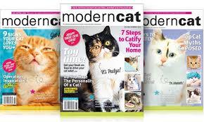 modern cat 50 on modern cat magazine subscription groupon goods