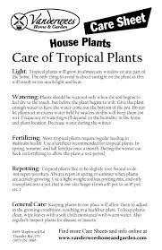 Plant Care Sheets Vanderwees Home & Garden
