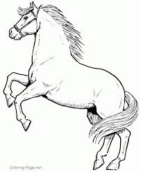 Online Horses Coloring Pages To Print AycRt