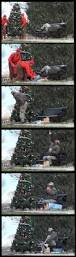 What Kind Of Trees Are Christmas Trees by This Is Probably The Best Kind Of Prank The Meta Picture