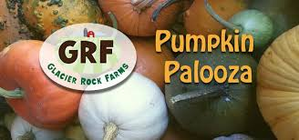 Best Pumpkin Patches Near Milwaukee by Glacier Rock Farms Wisconsin Farm Petting Zoo Pumpkins