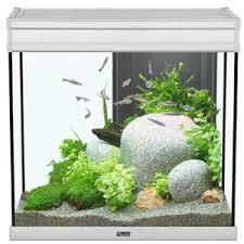 aquarium 150 litres achat vente aquarium 150 litres pas cher