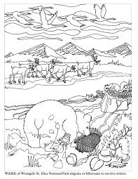 Animal Migration Coloring Pages
