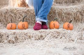 Pumpkin Patches Near Chico California by Julia U0027s Fruit Stand 807 Photos 169 Reviews Food Stand Los