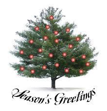 Santa Cruz County Christmas Tree Farms by 237 Best Christmas Tree Farm Images On Pinterest La La La