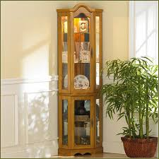 Curved Glass Curio Cabinet by Glass Curio Cabinets Ikea Home Design Ideas