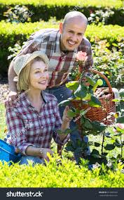 Mature Positive Couple Engaged Gardening Backyard Stock Photo ... Garden Center Workshops 2017 Pemberton Farms Marketplace Small Vegetable Design Ideas Designing A With Raised Beds Explore The Backyard Rancho Los Cerritos Historic Site Diy Yard Art And Homemade Outdoor Crafts Earth Day In Be An Friendly Gardener 17 Low Maintenance Landscaping Chris Peyton Lambton Patio Designs Smart Sneaky Storage 41 Stunning Pictures From Tootsie Time I Love Backyard Flower Garden Red Ponds Archives Glenns Gardening Blog Kale Beets Growing Odleynderworks 51 Front