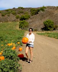 Mcgrath Pumpkin Patch Camarillo by Steamed Not Fried