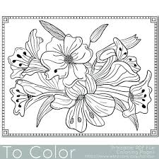 Youll Enjoy Coloring This Lilies Bunch Of Flowers Floral PDF Page From To Color