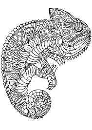 Coloring Pages Gallery For Photographers Animal Mandala