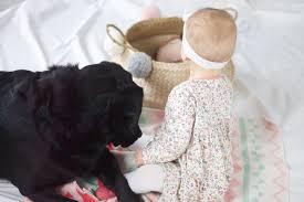 baby und hund funktioniert das küstengezwitscher
