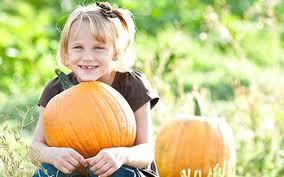 Hurricane Utah Pumpkin Patch by Halloween Pass With Corn Maze And Pumpkin Or Nighttime Fright