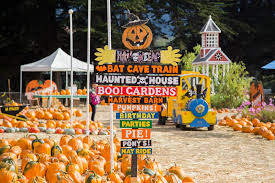 Pumpkin Fest Half Moon Bay by Half Moon Bay