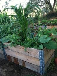 Raised Garden Beds NOCO