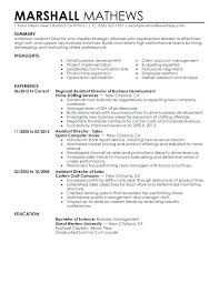 It Manager Resume Examples Infrastructure Manager Resume Example