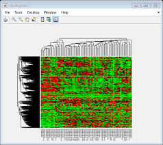 Matlab Cell To Double by Working With The Clustergram Function Matlab U0026 Simulink