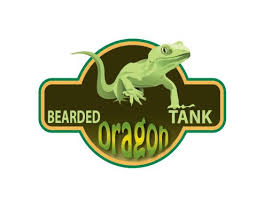 Bearded Heat L Timer by Best 25 Bearded Lighting Ideas On Reptile