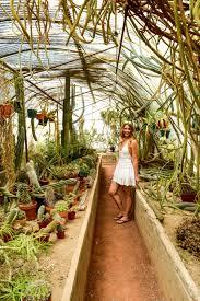 Moorten Botanical Garden – Odyssey Designs