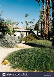 100 Midcentury Modern Architecture USA Palm Springs Garden In Front Of