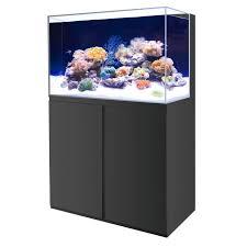 aquarium 250 litres achat vente aquarium 250 litres pas cher