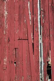 Barn Wood Background Free Stock Photo - Public Domain Pictures Old Wood Texture Rerche Google Textures Wood Pinterest Distressed Barn Texture Image Photo Bigstock Utestingcimedyeaoldbarnwoodplanks Barnwood Yahoo Search Resultscolor Example Knudsengriffith The Barnwood Farmreclaimed Is Our Forte Free Images Floor Closeup Weathered Plank Vertical Wooden Wall Planking Weathered Of Old Stock I2138084 At Photograph I1055879 Featurepics Photos Alamy