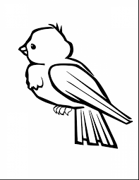 Terrific Bird Coloring Pages With Of Birds And Migrating