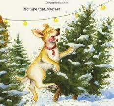 Christmas Tree Books For Kindergarten by 80 Best Kindergarten Reading Level Images On Pinterest Baseball