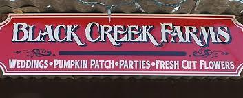 Boyd Tx Pumpkin Patch by Black Creek Farms
