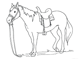 Free Horse Coloring Pages Printable Spirit Riding And Baby Running