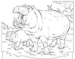 Free Cute Hippo Coloring Pages Mom And Baby Pictures For Kids