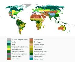 Earth Floor Biomes Desert by Climate Zones And Biomes Lesson 0111 Tqa Explorer
