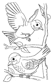 Innovative Coloring Pages Birds Awesome Design Ideas